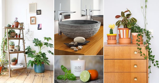 Go Organic with these 10 Natural Decor Elements & Organic Decor Archives - Homebliss