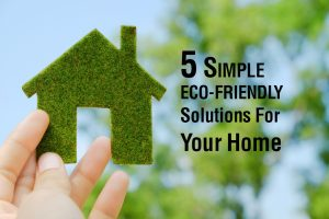 5 Simple Eco-Friendly Solutions For Your Home