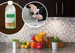How to Get Rid of Ants - Multipurpose Cleaner & Ant Killer
