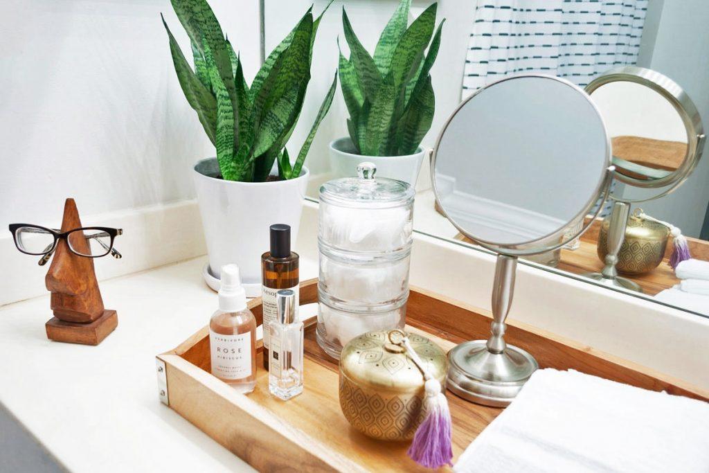 Indoors Plants In The Bathrooms