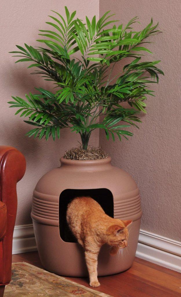 Indoors Plants Hide Those Eyesores