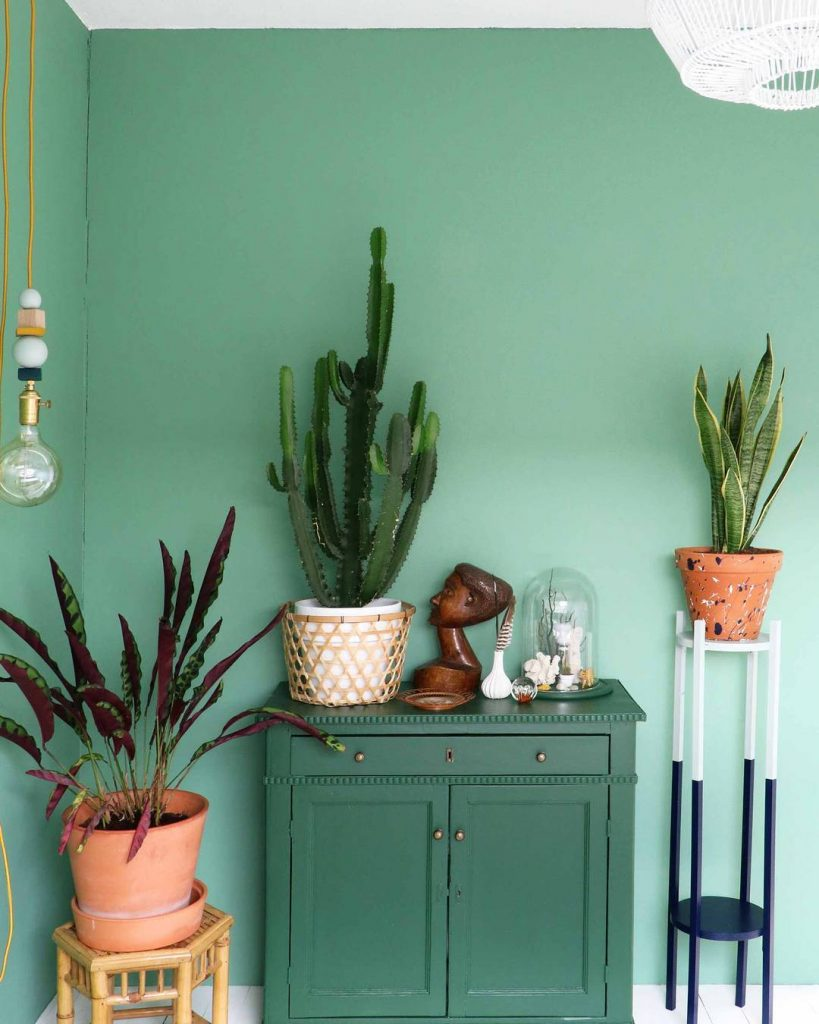 How The Green Color Of A Room Affects Your Mood